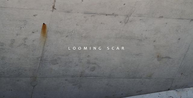 lisagalesloot_loomingscar_01